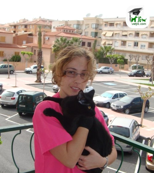 Antonia y el gato